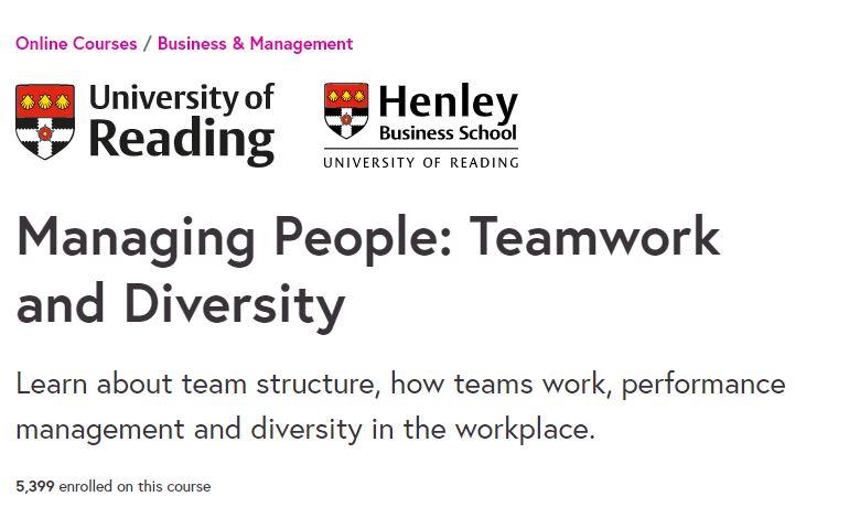 Managing people teamwork and diversity