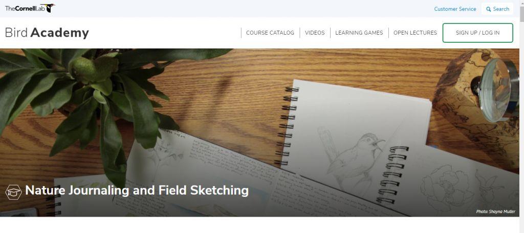 Nature Journaling and Field Sketching (Bird Academy)