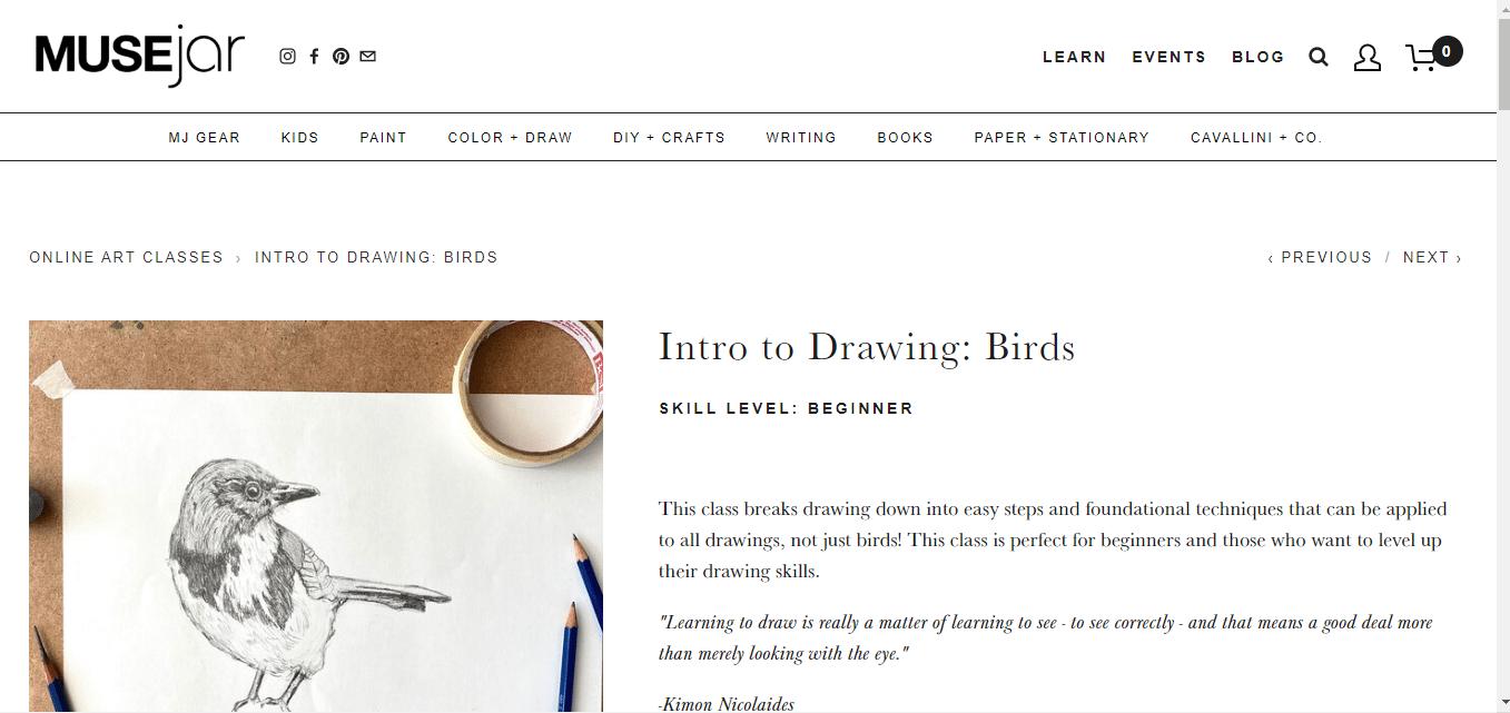 Intro to Drawing: Birds (MUSEjar)