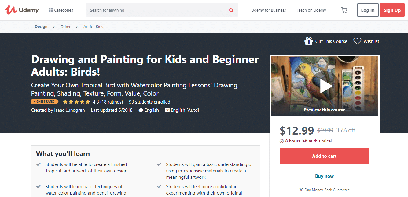 Drawing and Painting for Kids and Beginner Adults: Birds!
