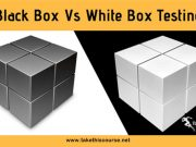 Black Box Testing vs White Box Testing
