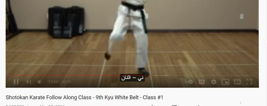 Shotoken Karate
